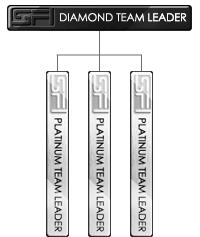 Diamond Team Leader